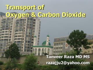 Transport of  Oxygen & Carbon Dioxide