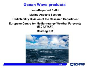 Ocean Wave products