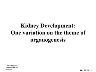 Kidney Development: One variation on the theme of organogenesis