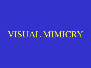 VISUAL MIMICRY