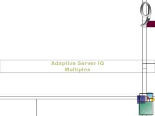 Adaptive Server IQ Multiplex
