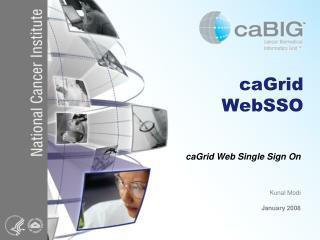 caGrid WebSSO