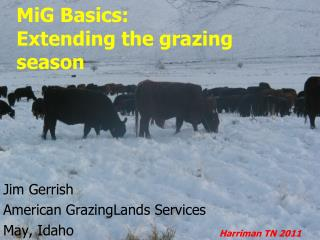 MiG Basics: Extending the grazing season
