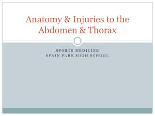Anatomy & Injuries to the Abdomen & Thorax