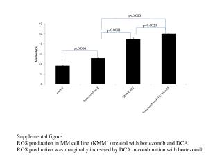 Supplemental figure 1 ROS production in MM cell line (KMM1) treated with bortezomib and DCA.