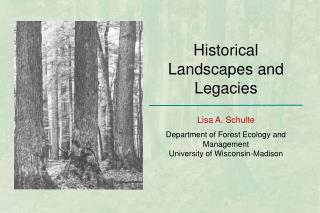 Historical Landscapes and Legacies