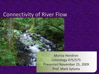 Connectivity of River Flow