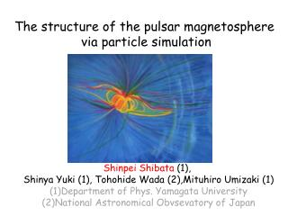 The structure of the pulsar magnetosphere  via particle simulation