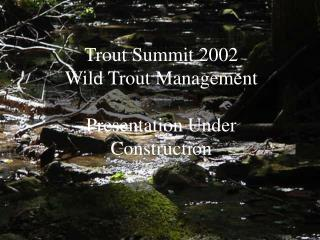 Trout Summit 2002  Wild Trout Management Presentation Under Construction