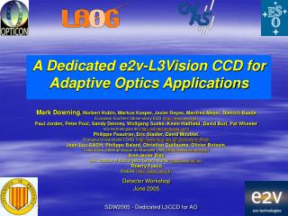 A Dedicated e2v-L3Vision CCD for Adaptive Optics Applications