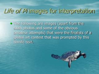 Life of Pi  images for interpretation