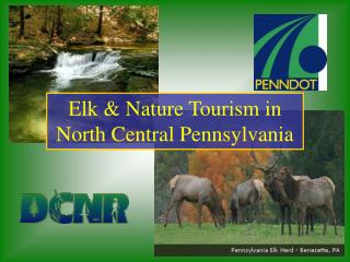 Elk & Nature Tourism in North Central Pennsylvania