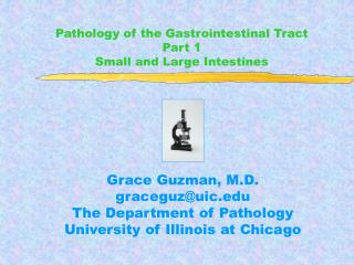 Pathology of the Gastrointestinal Tract  Part 1 Small and Large Intestines