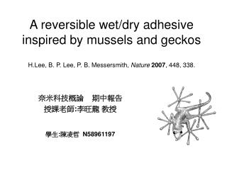 A reversible wet/dry adhesive inspired by mussels and geckos