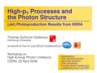 High-p T  Processes and  the Photon Structure (Jet) Photoproduction Results from HERA