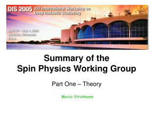 Summary of the Spin Physics Working Group