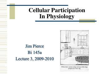 Cellular Participation In Physiology