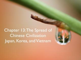 Chapter 13: The Spread of Chinese Civilization Japan, Korea, and Vietnam