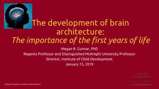The development of brain architecture: The importance of the first years of life
