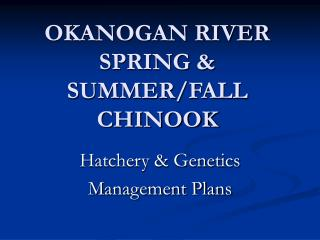 OKANOGAN RIVER SPRING & SUMMER/FALL CHINOOK
