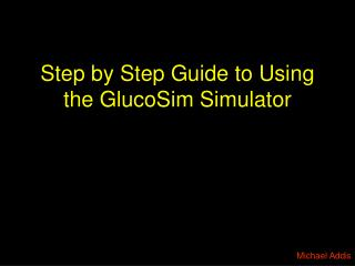 Step by Step Guide to Using the GlucoSim Simulator