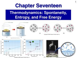Thermodynamics: Spontaneity, Entropy, and Free Energy