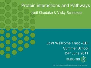 Protein interactions and Pathways