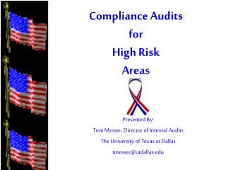 Compliance Audits for  High Risk Areas