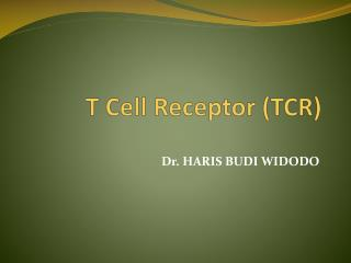 T Cell Receptor (TCR)