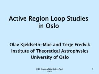 Active Region Loop Studies in Oslo
