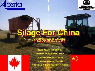 Silage For China 中国的青贮饲料