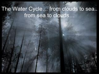 The Water Cycle… from clouds to sea.. from sea to clouds…