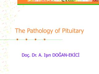 The Pathology of Pituitary