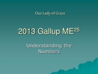 2013 Gallup ME 25