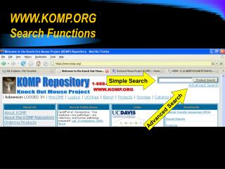 WWW.KOMP.ORG Search Functions