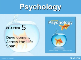 Social  Personality Development in the Preschool Years