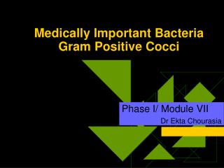 Medically Important Bacteria Gram Positive Cocci