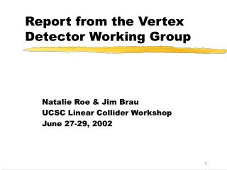 Report from the Vertex Detector Working Group
