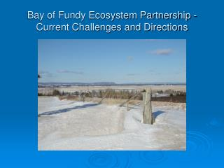 Bay of Fundy Ecosystem Partnership - Current Challenges and Directions
