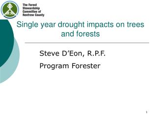 Single year drought impacts on trees and forests