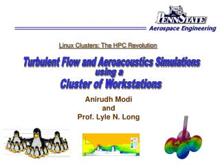 Anirudh Modi  and  Prof. Lyle N. Long 26th June, 2001