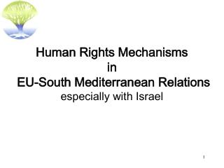 Human Rights Mechanisms in EU-South Mediterranean Relations especially with Israel