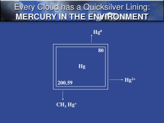 Every Cloud has a Quicksilver Lining: MERCURY IN THE ENVIRONMENT