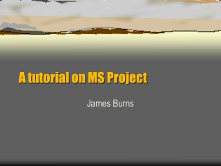 A tutorial on MS Project