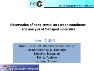 Observation of nano-crystal on carbon nanohorns  and analysis of Y-shaped molecules