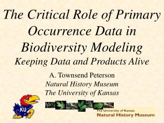 A. Townsend Peterson Natural History Museum The University of Kansas