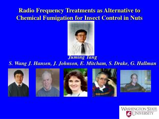 Radio Frequency Treatments as Alternative to Chemical Fumigation for Insect Control in Nuts