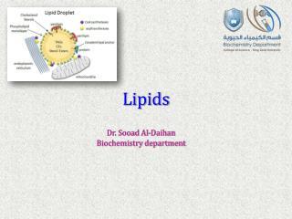 Lipid s