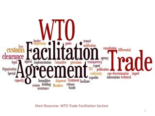Sheri Rosenow- WTO Trade Facilitation Section