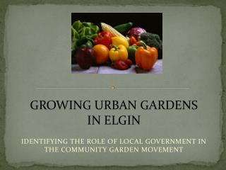 IDENTIFYING THE ROLE OF LOCAL GOVERNMENT IN THE COMMUNITY GARDEN MOVEMENT